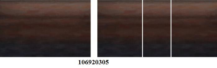 106920305