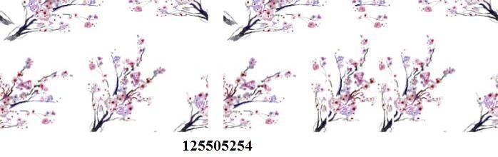 125505254