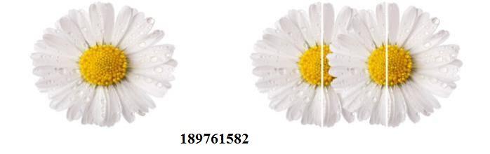 189761582