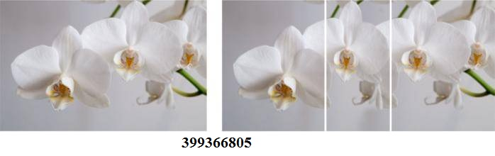 399366805