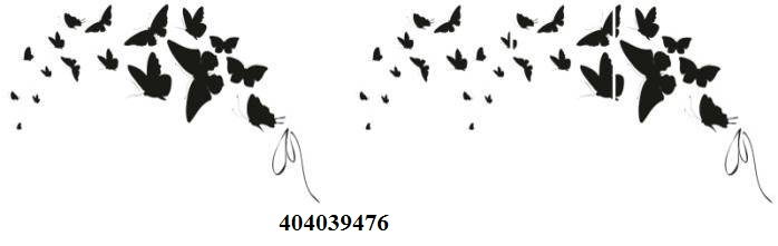 404039476