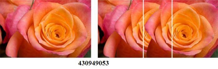 430949053