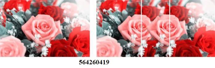 564260419