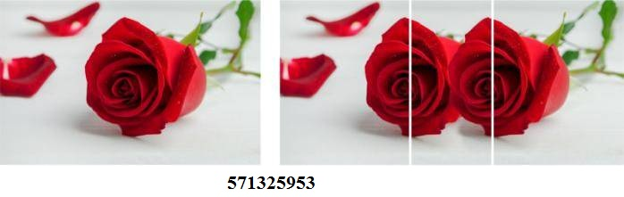 571325953