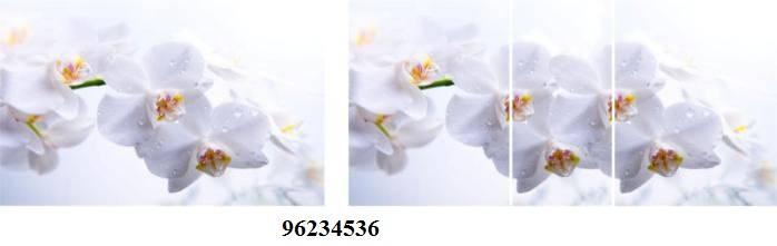 96234536