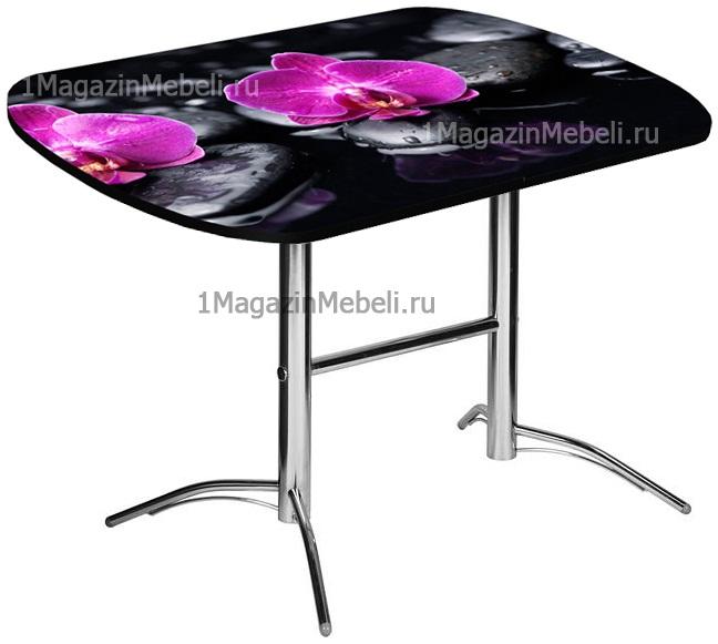 Стол кухонный с фото-принтом стеклянный не раздвижной 120х80 см. (арт. М4423)