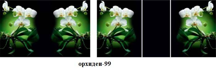 орхидеи-99