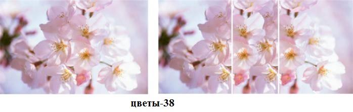цветы-38
