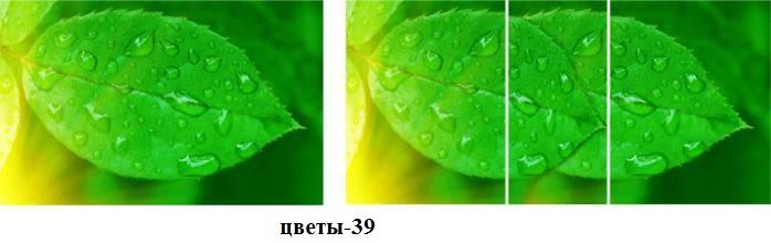цветы-39