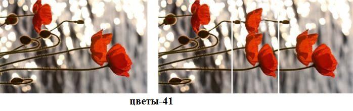 цветы-41