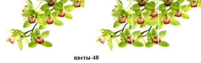 цветы-48