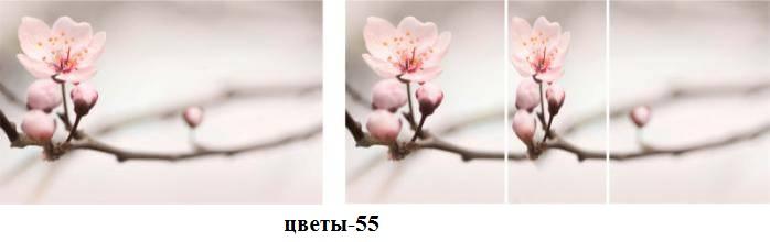 цветы-55