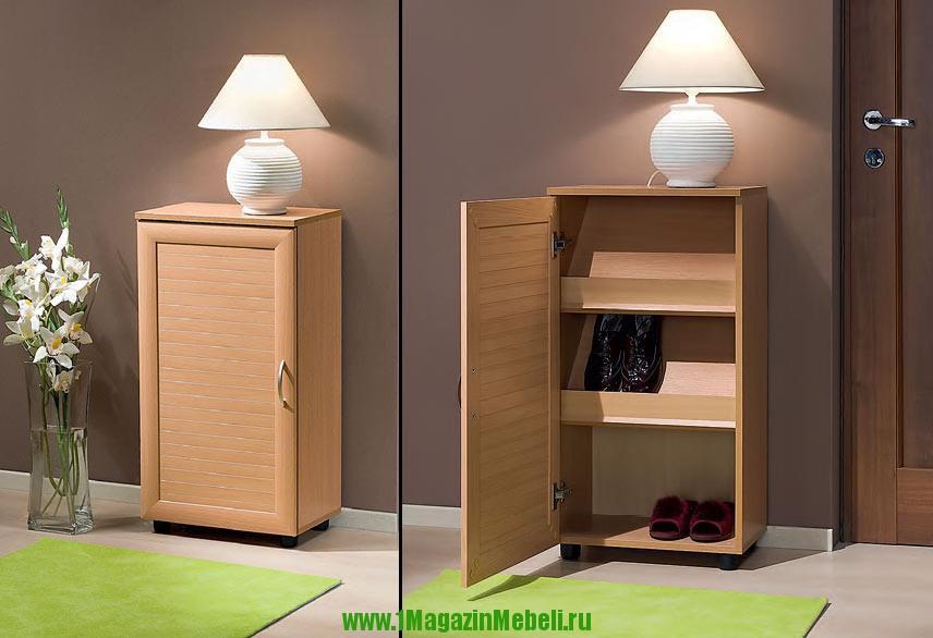 Тумба для обуви | обувной шкаф | обувница Бона-3 (арт. М305)